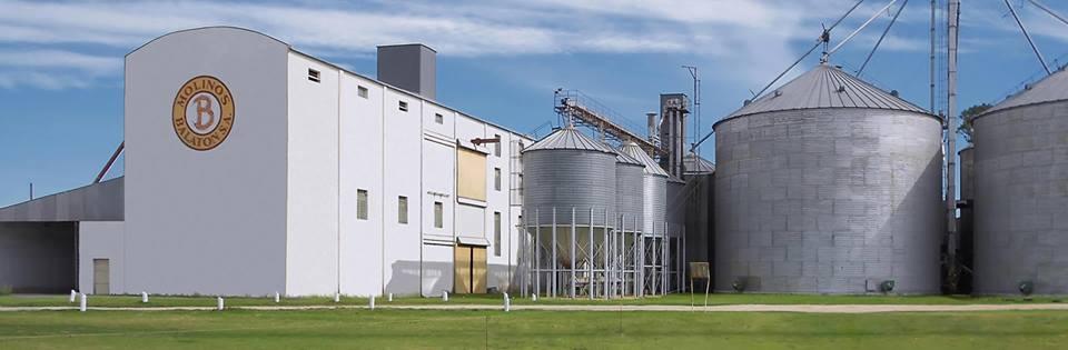 Molinos Balaton amplía su capacidad productiva de harina con una importante inversión